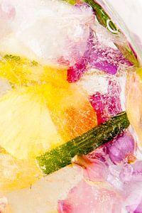 Planten en bloemen bevroren in ijs