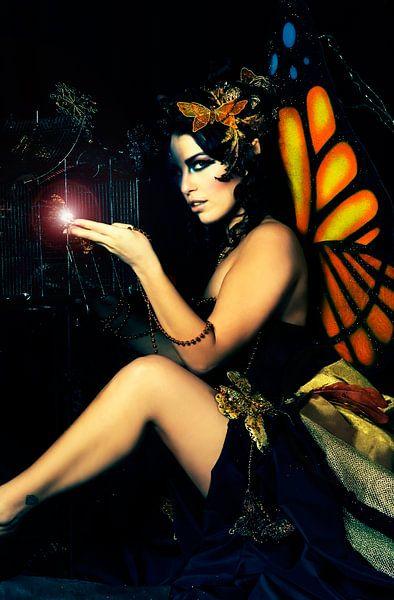 Butterfly Queen van Kim van Luijtelaar