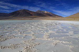 Zoutmeer hoog in de Andes