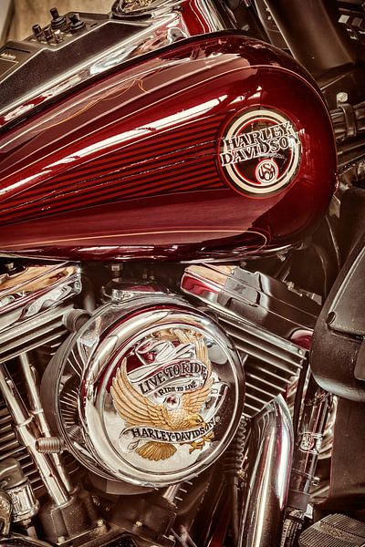 Live to Ride - Ride to Live van Martin Bergsma