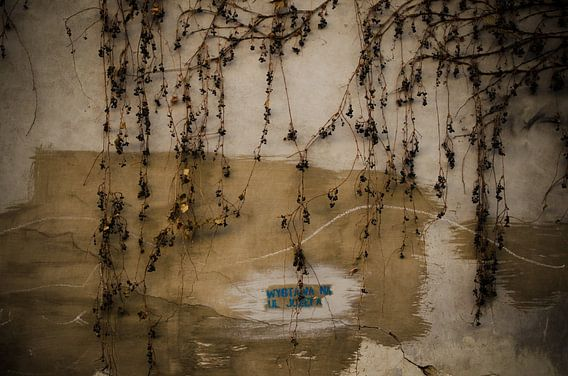 Takjes voor beschadigde, gele muur van Willem van den Berge