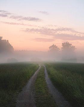 Foggy road, Christian Lindsten van 1x