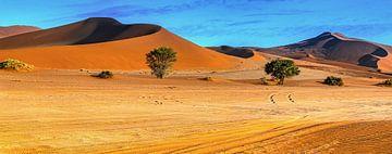 Langs de rode duinen van in de Sossusvlei,  Namibië van Rietje Bulthuis