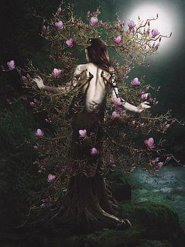 Magnolie von Babette van den Berg