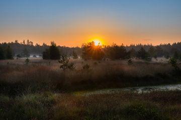 Lever de soleil dans la forêt de Geeser sur Hans Jansen - Lynxs Photography