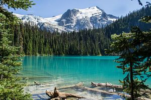 Joffre-Seen-Provinzpark, Kanada von Claudia Esveldt