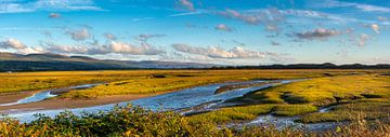 Trockenes Land an der Küste des Irischen Meers, Wales von Rietje Bulthuis