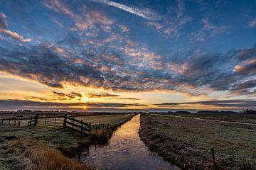 Magnifique lever de soleil dans le parc national de Weerribben-Wieden, aux Pays-Bas. sur Dafne Vos