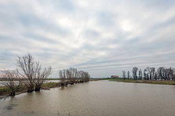 Noordwaardpolder vol water von Ruud Morijn