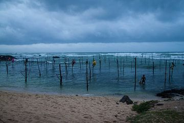 paalvissers te Sri Lanka. sur Rony Coevoet