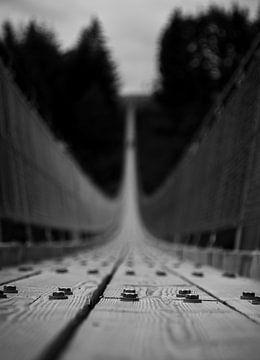 Der Kern der Brücke von Sharon de Groot