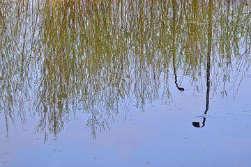 Reflexionen von grünen Büschen im Wasser von Ingrid Bargeman