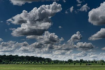 Holländische Wiese mit Wolken von Tessa Louwerens
