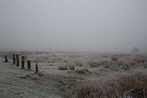 Mist en rijp in Drenthe van Tekstvaart Photography