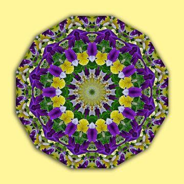 Flower Mandala, Pansies yellow, violett  van Barbara Hilmer-Schroeer