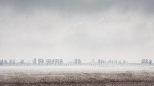 Mist over Zeeuwse akker