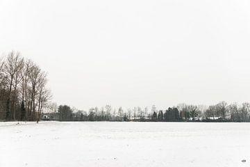 Winters landschap met aan de horizon een rij bomen die laten zien dat het land is vol van sneeuw. van Lieke van Grinsven van Aarle