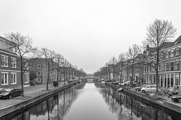 Herengracht, Leiden sur Patrick Herzberg