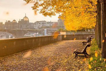 Herfststemming in Dresden van Sergej Nickel