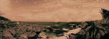 De indrukwekkende rotsachtige noordkust van Tenerife op een ongewone manier van kanarischer Inselkrebs Heinz Steiner