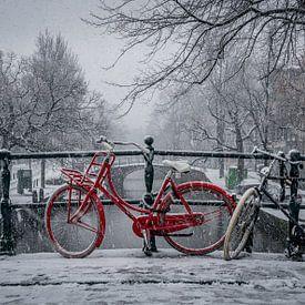 Rotes Fahrrad im Schnee von Toon van den Einde
