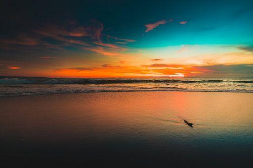 Berawa beach van Andy Troy