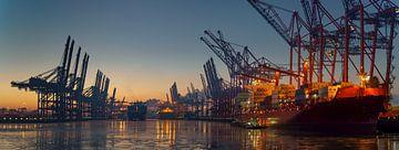 Containerterminal in de haven van Hamburg in de ochtend bij ijzige temperaturen van Jonas Weinitschke