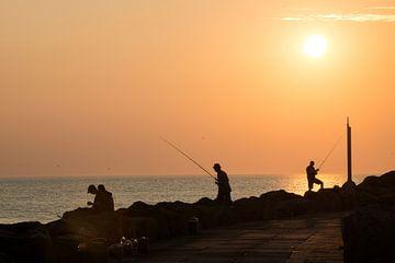 Vissen bij zonsondergang van Daniela Tchinitchian