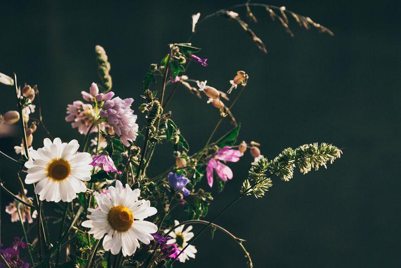 Wilde bloemen van Jessie Jansen