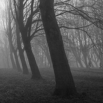 Geister-Läufer von Thijs Friederich