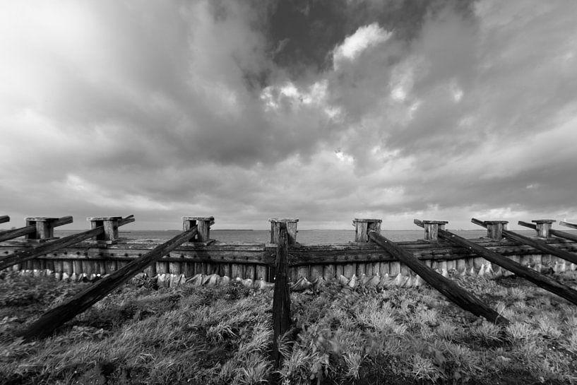 Palendijk onder wolkenhemel van Felix Sedney