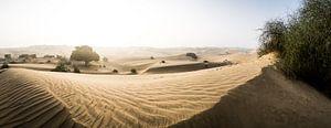 Woestijn Panorama van