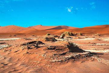 Zandheuvels in de Dode vallei, Namibië van Rietje Bulthuis