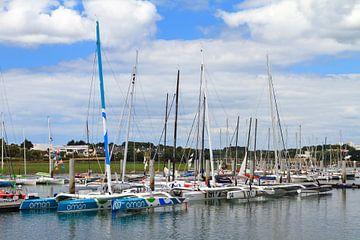Catamarans in de haven von Dennis van de Water