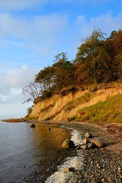 Rügener Boddenküste van Ostsee Bilder