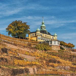 Spitz House Radebeul