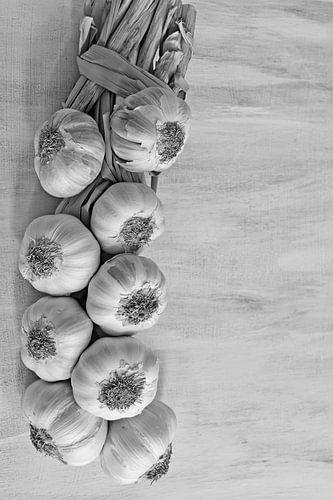 Garlic van Carla Mesken-Dijkhoff