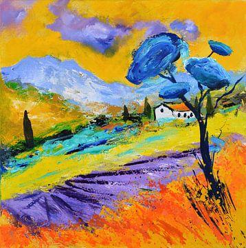 Provence -4402 von pol ledent