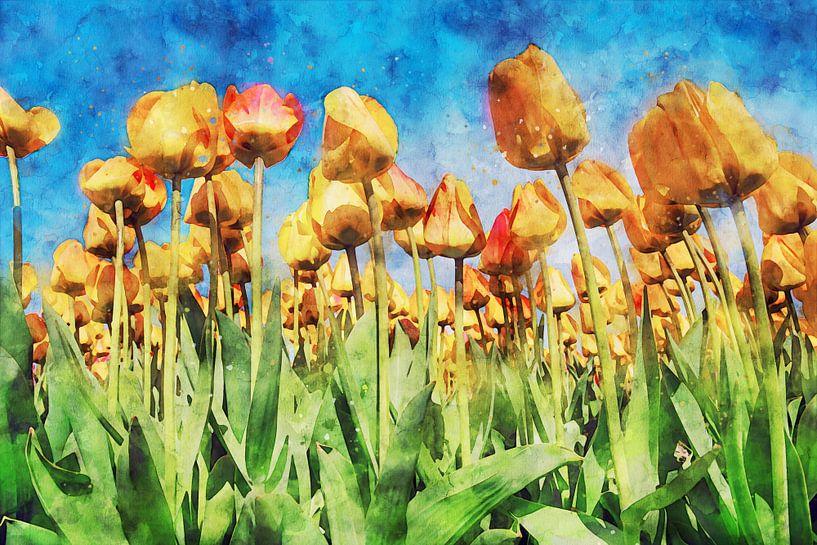 tulpenbloem onder een blauwe hemel van Digikhmer