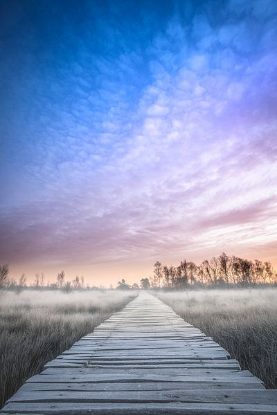 Winterse zonsopkomst in Limburg van Jeroen Mikkers