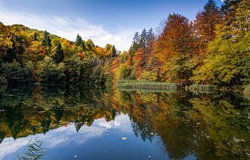 Plitvicemeren, Kroatië van Adelheid Smitt