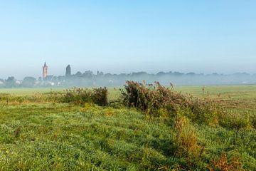 Nederlands polder landschap in de zomer.