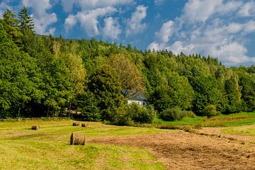 Ontspannen nazomerwandeling op de Rennsteig/Thuringische Wald van Oliver Hlavaty