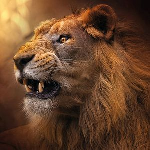 De kracht van een leeuw