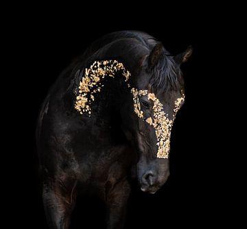 goud fries paard van Kim van Beveren