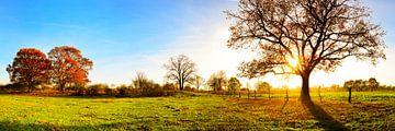 Herbstlandschaft im Emsland von Günter Albers