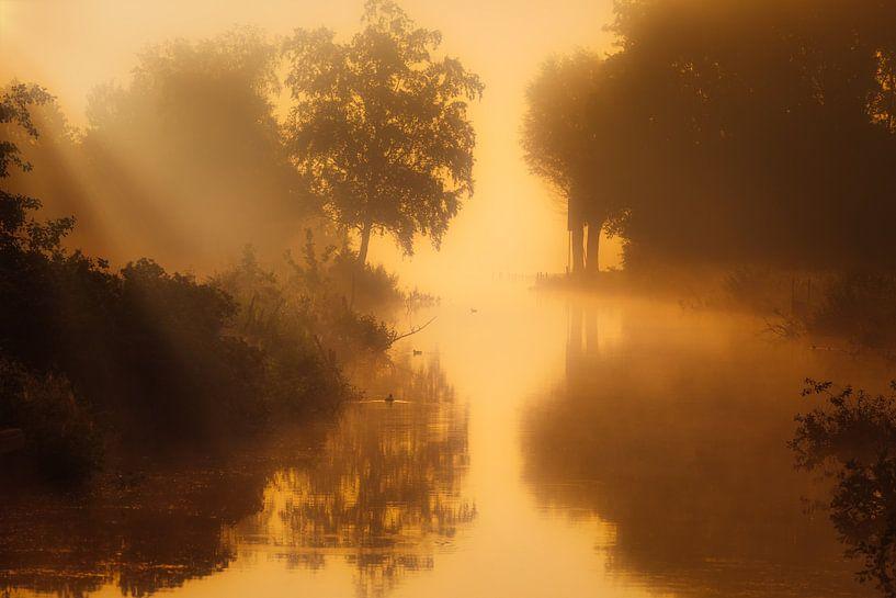 Een mistige landschap bij het Zuidlaardermeer in Drenthe van Bas Meelker