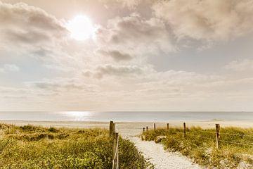 Weg naar het strand van de Oostzee van Ursula Reins