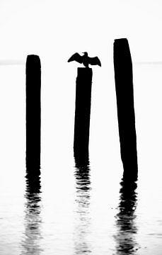 Wattenmeer bei Texel. von Justin Sinner Pictures ( Fotograaf op Texel)