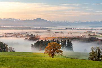 Panoramisch uitzicht over de Allgäu tot in het Illertal van Leo Schindzielorz
